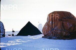 NIPR_017415.jpg