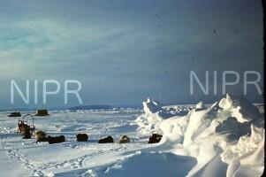 NIPR_017427.jpg