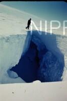 NIPR_017439.jpg