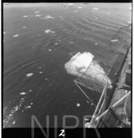 NIPR_017498.jpg