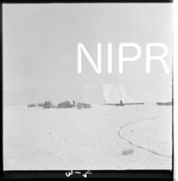 NIPR_017526.jpg