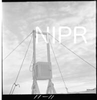 NIPR_017543.jpg