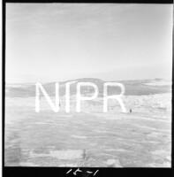 NIPR_017554.jpg