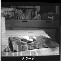 NIPR_017666.jpg