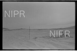 NIPR_017895.jpg