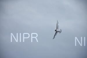 NIPR_060094.JPG