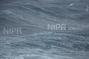 NIPR_060122.JPG